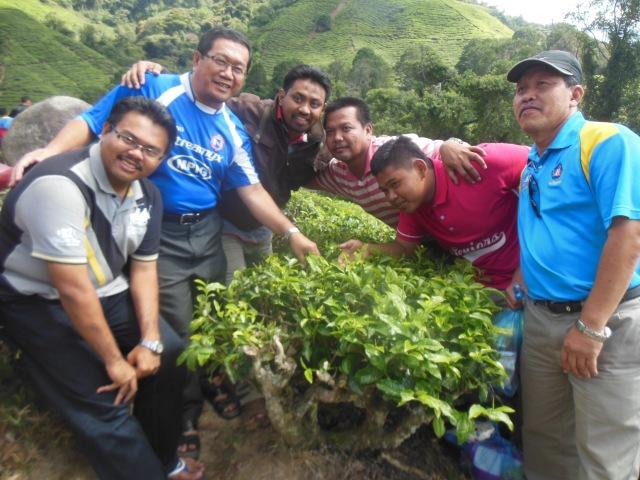 Foto di ladang teh